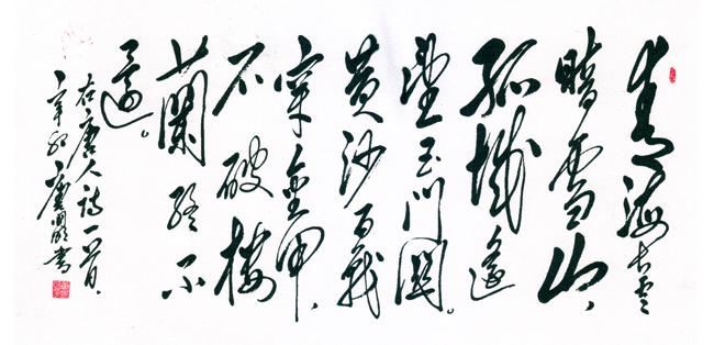 唐山藉毛体书法家唐国明